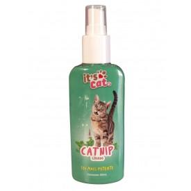 It's Cat Catnip Líquido - 120mL